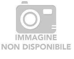 COLORI A TEMPERA + PENNELLO